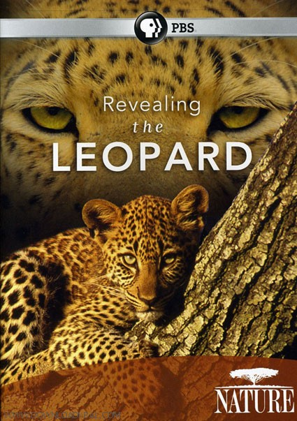 Revealing_the_Leopard_Cover