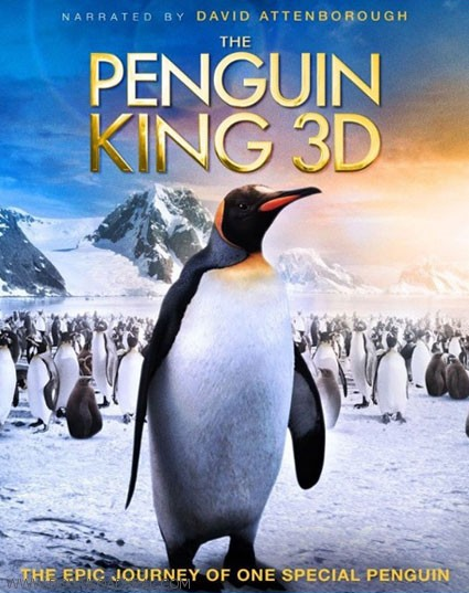 The Penguin King 2012 (3)