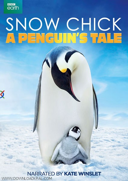 Snow Chick A Penguin's Tale 2015 (1)